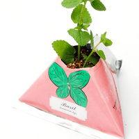 Květiny a bylinky v papírovém květináči s potiskem - bazalka