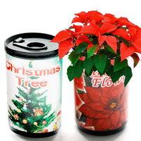Květiny a bylinky v plastové plechovce s potiskem - vánoční hvězda