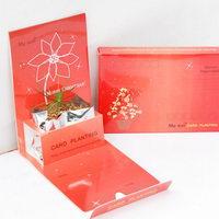 Květiny a bylinky v papírové dárkové kartičce s potiskem - vánoční motiv