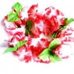 Havajské věnce červené velkoobchod