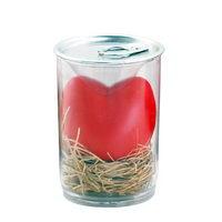 Kouzelná fazole se vzkazem v srdci v plastové plechovce