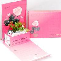 Květiny a bylinky v papírové dárkové kartičce s potiskem - motiv láska