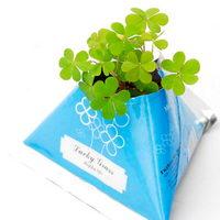 Květiny a bylinky v papírovém květináči s potiskem - čtyřlístek