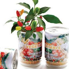 Reklamní rostliny v plechovce - ovoce, zelenina