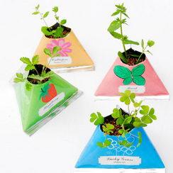 Reklamní rostliny v plechovce jako dárek