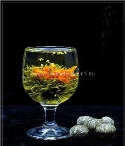 Reklamní kvetoucí čaj vonokvětka, lilie