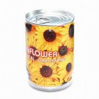 Květiny v plechovce - slunečnice