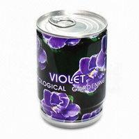 Květiny - fialka v plechovce