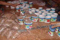 Kytky v plechovce od výrobce na zakázku