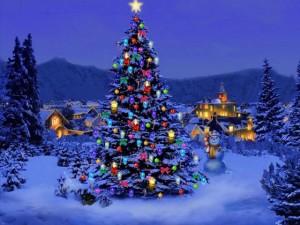 druhy vánoční dekorace od výrobce